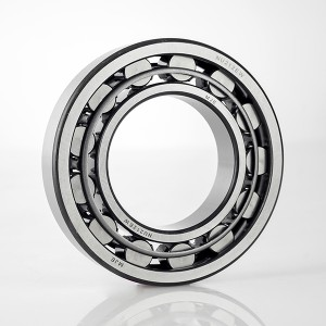 NU NJ NUP 200 series Cylindrical roller bearing